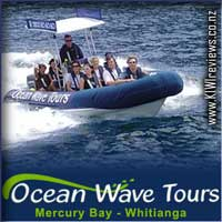 OceanWaveTours