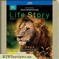 Life Story - Many Lives, One Epic Journey